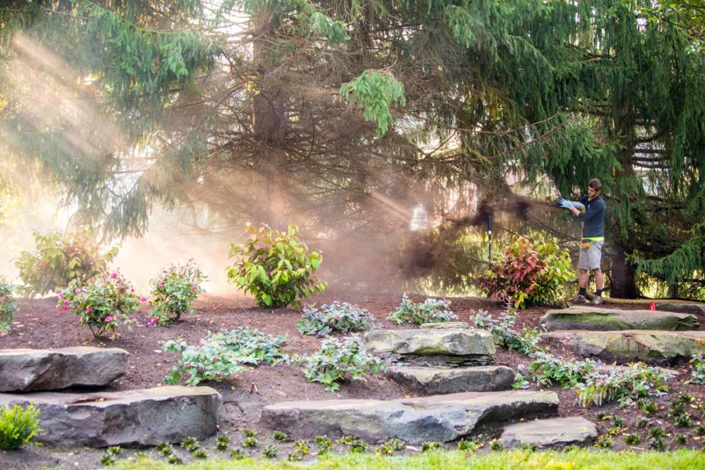 landscaping photography michigan